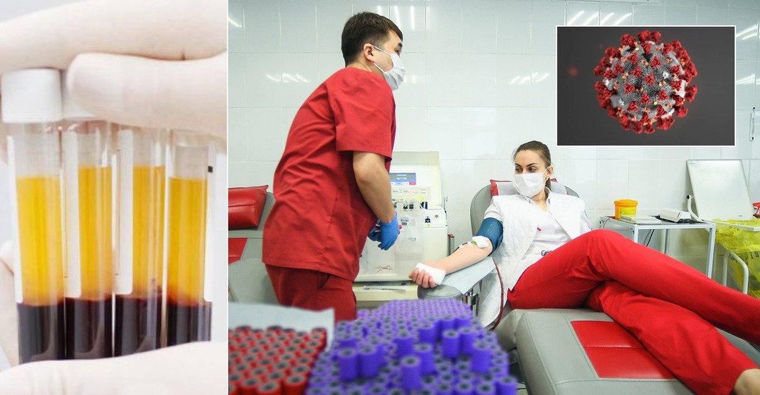Ученые проверили эффективность плазмы крови при лечении COVID-19: обнародованы показательные результаты