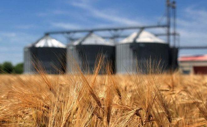 Реорганизация Госпродпотребслужбы. Аграрии заявили об угрозе остановки экспорта