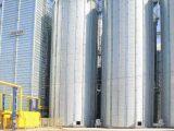 Нетолько гипермаркеты. Эпицентр запустил элеватор вКиевской области исоздает сеть зерновых хабов повсей стране