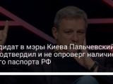Кандидат в мэры Киева Пальчевский не подтвердил и не опроверг наличие у него паспорта РФ