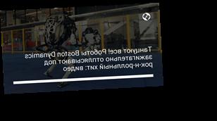 Танцуют все! Роботы Boston Dynamics зажигательно отплясывают под рок-н-ролльный хит: видео