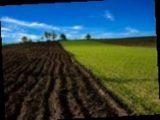 Лицам, которые единолично обрабатывали более 2 гектаров земли, необходимо задекларировать доходы