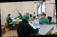 COVID-вакцинацию начали более 30 стран — ВОЗ