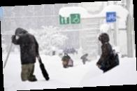 В Японии в результате снегопада пострадали 76 человек