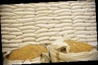 В мире растет спрос на украинское зерно — МЭРТ