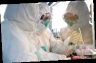 В Германии новый штамм коронавируса