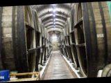 ВКрыму винзавод Коктебель «продали» за $1,4 млн