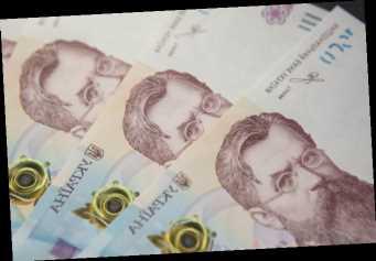 Международные резервы Украины выросли за год на 15% – до 8-летнего максимума