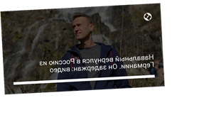Навальный вернулся в Россию из Германии. Он задержан: видео
