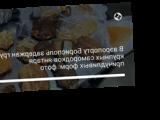В аэропорту Борисполь задержан груз крупных самородков янтаря причудливых форм: фото