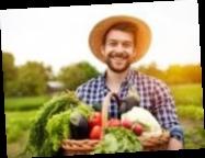Фермеры до 35 лет получат господдержку — законопроект приняли за основу