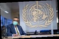 В мире третью неделю подряд снижается число заболевших COVID-19 — ВОЗ