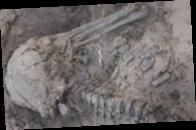 Сожженная древняя женщина: археологи обнаружили интересную находку
