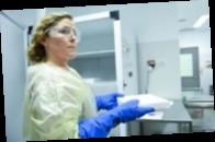 В Сербию доставили новую партию российской COVID-вакцины