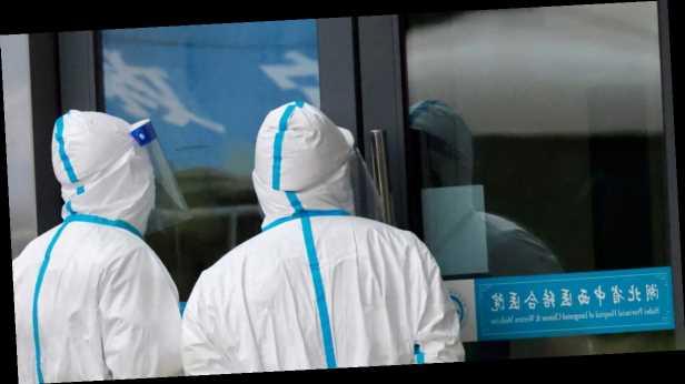 Не лаборатория и не рынок: член миссии ВОЗ в Ухань раскрыл происхождение коронавируса