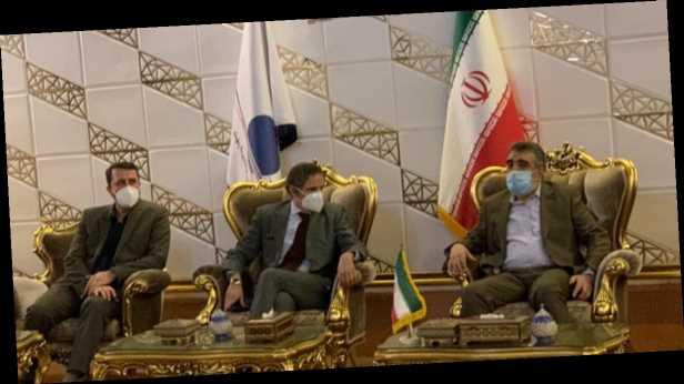 Глава МАГАТЭ прибыл в Иран: опасается ограничения инспекций ядерных объектов