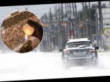 В США начали распространять теорию о »фейковом» снеге и заговоре правительства. Видео