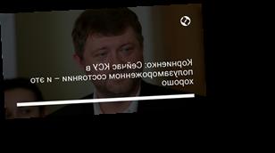 Корниенко: Сейчас КСУ в полузамороженном состоянии – и это хорошо