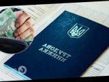 Украинцам будут по-новому назначать пенсии, а трудовые отменят: Зеленский подписал закон