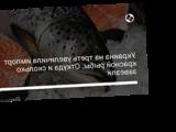 Украина на треть увеличила импорт красной рыбы. Откуда и сколько завезли