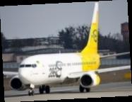 Bees Airline начнет летать из Киева во Львов, Одессу и Херсон