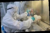 Число заражений коронавирусом в мире превысило 147 миллионов