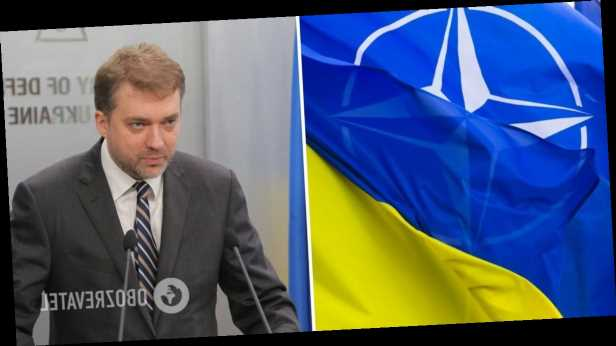 Экс-министр обороны рассказал, сможет ли Украина »завтра» вступить в НАТО