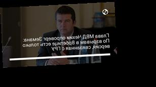 Глава МВД Чехии опроверг Земана: По взрывам в Врбетице есть только версия, связанная с ГРУ