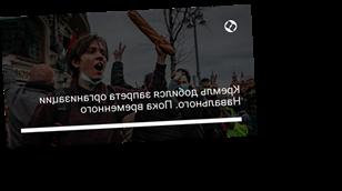 Кремль добился запрета организации Навального. Пока временного