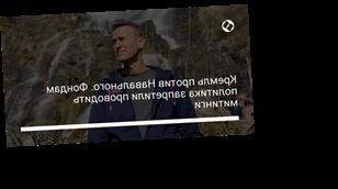 Кремль против Навального. Фондам политика запретили проводить митинги
