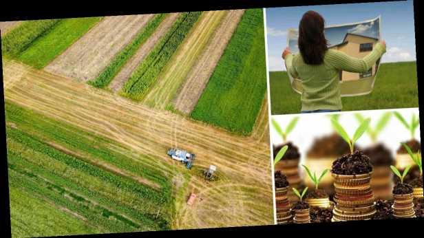 Получить бесплатные гектары земли смогут не все: в Минюсте объяснили детали реформы