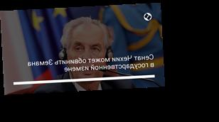 Сенат Чехии может обвинить Земана в государственной измене