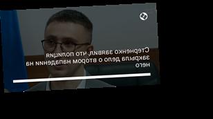 Стерненко заявил, что полиция закрыла дело о втором нападении на него