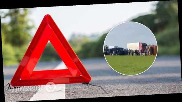 В России столкнулись микроавтобус с баскетбольной командой и КамАЗ: погибли 5 детей, 18 человек ранены
