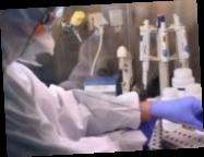 Зеленский распорядился создать лаборатории для разработки вакцин в Украине