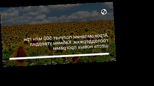 Агрокомпании получат 500 млн грн господдержки: Кабмин утвердил шесть новых программ