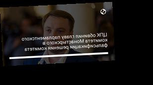 ЦПК обвинил главу парламентского комитета Монастырского в фальсификации решения комитета