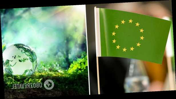 Александр Саенко: Зеленый курс Украины. Риски для экономики и что делать правительству