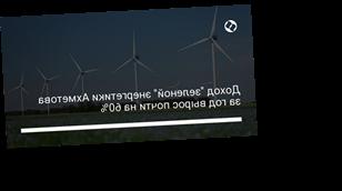 "Доход ""зеленой"" энергетики Ахметова за год вырос почти на 60%"