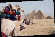 Египет снимает ограничения на работу ресторанов