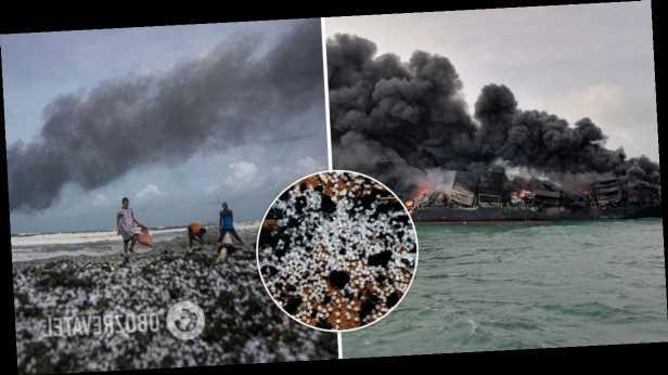 На Шри-Ланке загоревшееся судно устроило крупнейшее загрязнение в истории. Фото