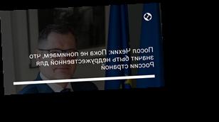 Посол Чехии: Пока не понимаем, что значит быть недружественной для России страной