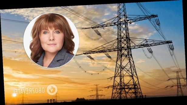 Ценовые ограничения на рынке электроэнергии провоцируют новый кризис, – нардеп Виктория Гриб