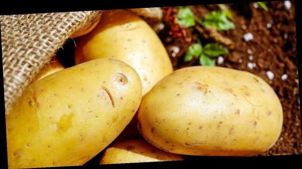 Украинская картошка стоит в два раза больше импортной: цена снижаться не будет