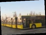 Все льготы на проезд в общественном транспорте монетизируют: в правительстве готовят документ