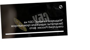 """""""Мадьяров на ножи"""". СБУ на Закарпатье задержала провокаторов спецслужб России: фото"""
