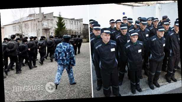 Максим Мирович: В России возрождается ГУЛАГ?