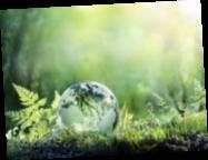Минцифры запускает платформу «ЭкоСистема»: для чего она необходима