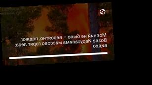 Молний не было – вероятно, поджог. Возле Иерусалима массово горят леса: видео
