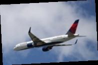 Остановите самолет : в США произошла экстренная посадка из-за пассажира